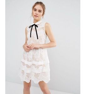 ASOS Endless Rose Contrast Collar Tiered Lace Mini